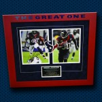 Andre Johnson - The Great One